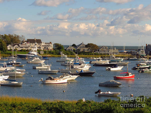 Photograph - Mid Week At The Cape by Donna Cavanaugh