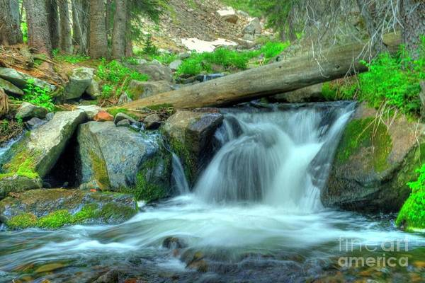 Photograph - Middle Taylor Creek by Tony Baca