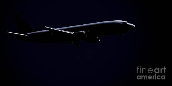 Photograph - Midnight Flight by Linda Shafer