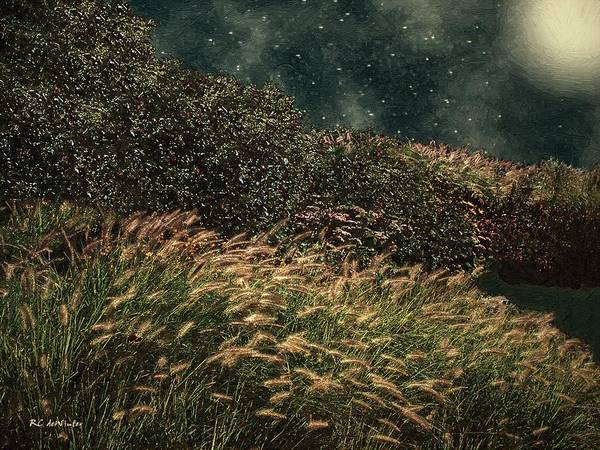 Painting - Midnight Marsh by RC DeWinter