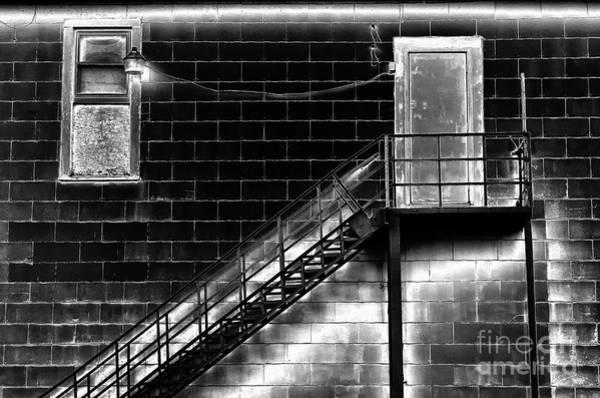 Photograph - Midnight Meeting by Karen Adams