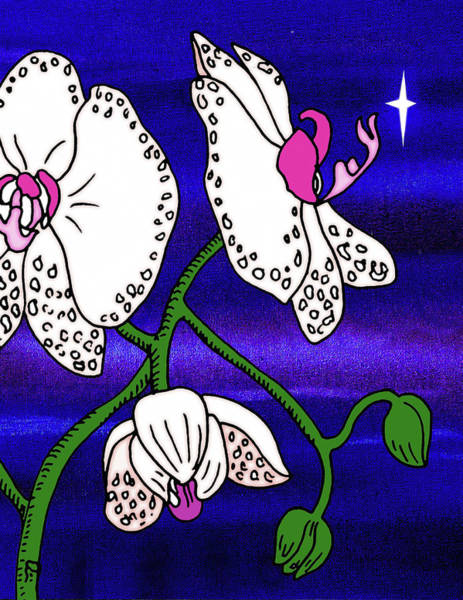 Orchid Mixed Media - Midnight Orchid  by Irina Sztukowski