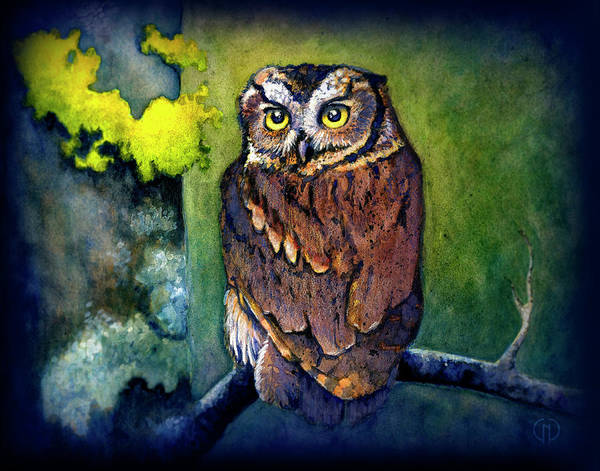 Bird Watercolor Mixed Media - Midnight Owl by Catherine Noel