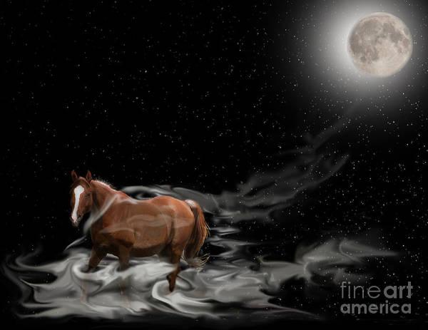 Photograph - Midnight Run by Vivian Martin