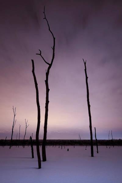 Photograph - Midnight Souls by Ryan Heffron