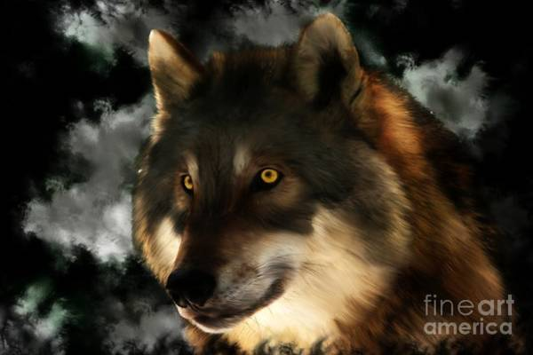 Digital Art - Midnight Stare - Wolf Digital Painting by Tracey Everington