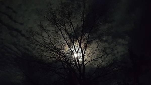 Chapa Photograph - Midnight Winter Moon by Amanda Chapa Berry