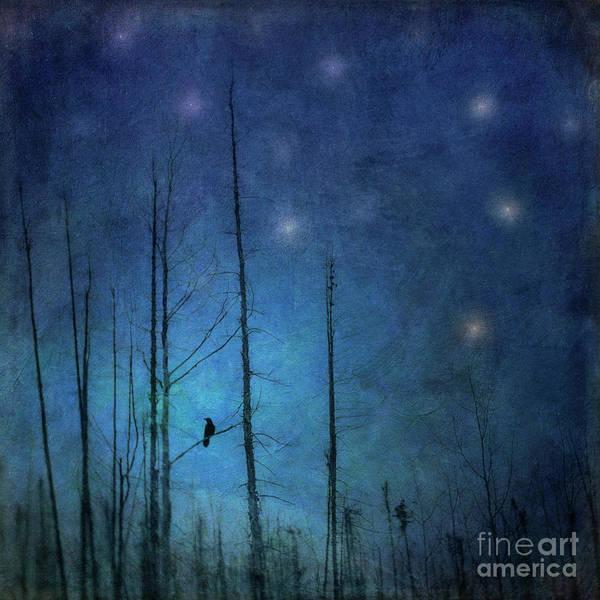 Wall Art - Photograph - Midnight Words by Priska Wettstein