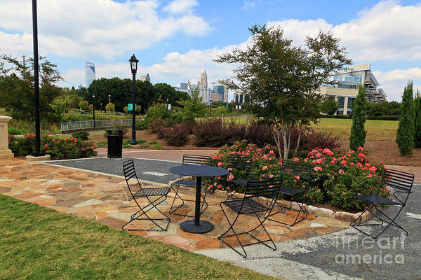 Photograph - Midtown Park In Charlotte In The Summer by Jill Lang