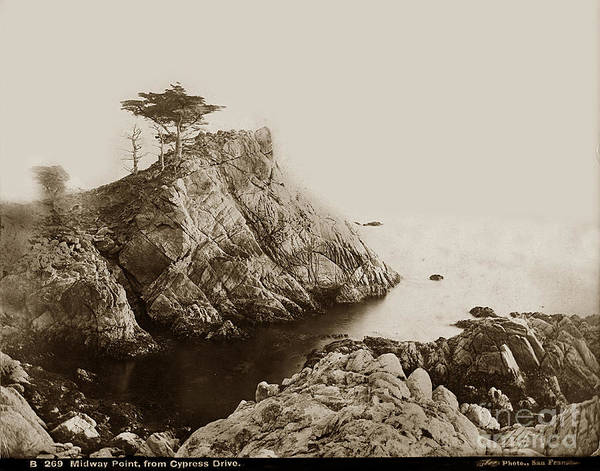 Photograph - Midway Point From Cypress Drive Pebble Beach I. W. Taber Photo Circa 1882 by California Views Archives Mr Pat Hathaway Archives