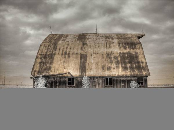 Linder Wall Art - Photograph - Midwestern Barn by Jane Linders