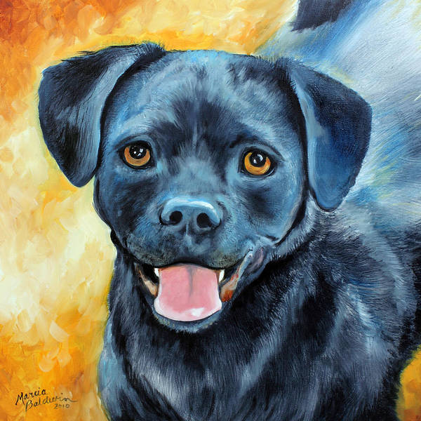 Painting - Mikey by Marcia Baldwin