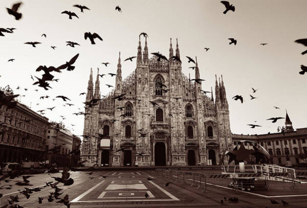 Photograph - Milan Cathedral Square Pigeon by Songquan Deng
