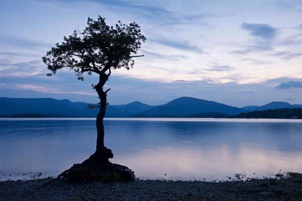 Photograph - Milarrochy Bay by Stephen Taylor