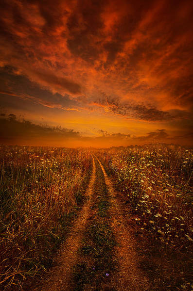 Vertical Line Wall Art - Photograph - Miles And Miles Away by Phil Koch
