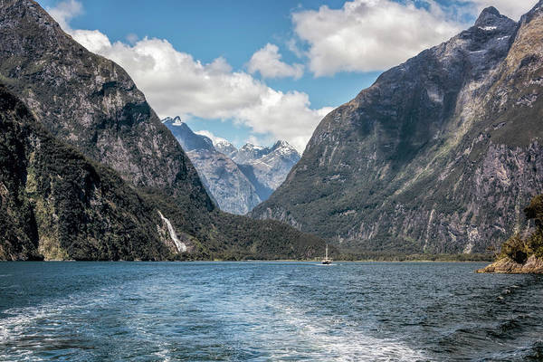Milford Photograph - Milford Sound Fiordland New Zealand by Joan Carroll