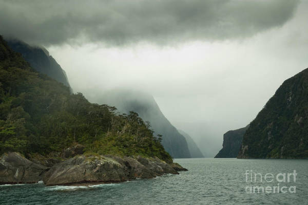Photograph - Milford Sound In Cloud  by Werner Padarin
