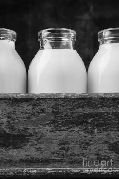 Baby Cow Photograph - Milk Bottles 3 Black And White by Edward Fielding