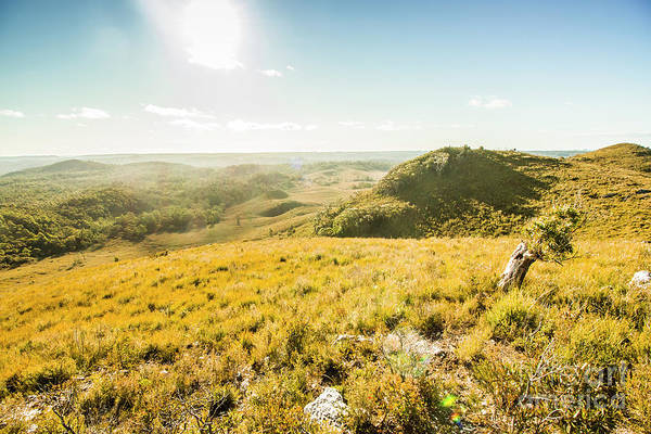 Grassland Photograph - Milkshake Hills Lookout by Jorgo Photography - Wall Art Gallery