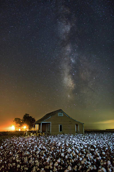 Photograph - Milky Way And Cotton by Eilish Palmer