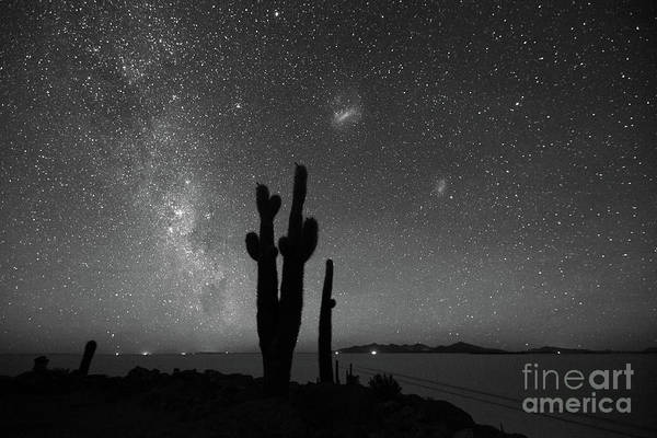 Photograph - Milky Way Magellanic Clouds And Cactus In Black And White Bolivia by James Brunker