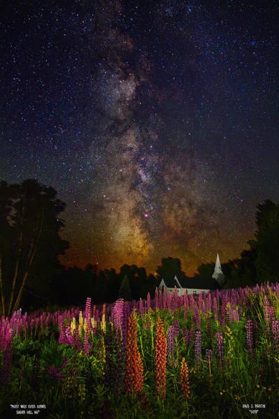Photograph - Milky Way Over Lupine Field by Dale J Martin