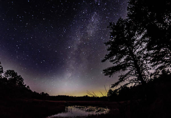 Cachalot Wall Art - Photograph - Milky Way Over The Bog by Dennis Wilkinson