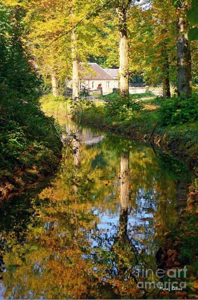 Photograph - Mill Brook, Arundel by Morag Bates