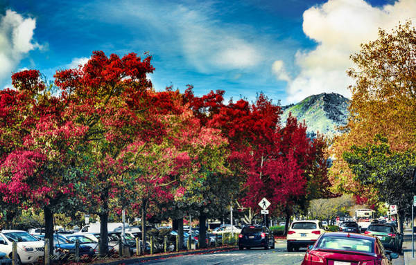 Photograph - Mill Valley Autumn by Brian Tada