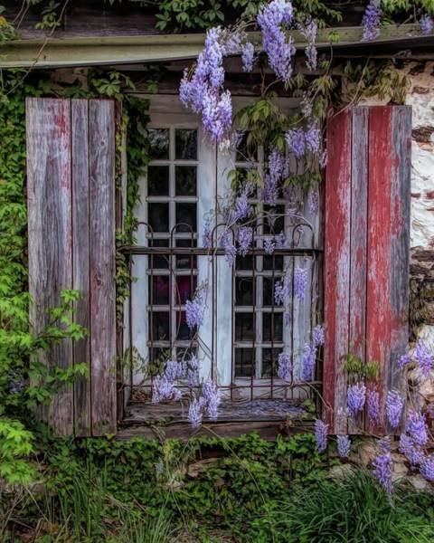 Photograph - Mill Window Framed By Wisteria  by Kristia Adams