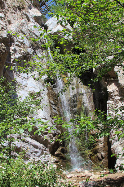 Photograph - Millard Falls by Viktor Savchenko