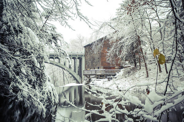 Wall Art - Photograph - Millcreek Park In The Winter by Jimmy Taaffe