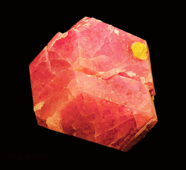 Photograph - Minereality #2 Grossular by Susan Vineyard