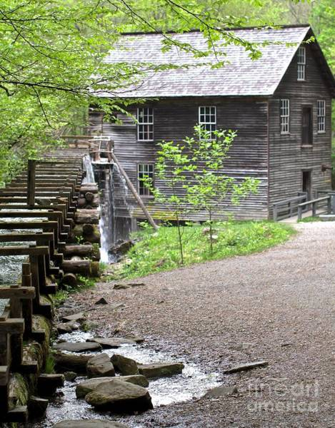 Millrace Wall Art - Photograph - Mingus Mill Memories by Robin Erisman