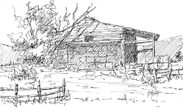 Drawing - Mini No 1 Pen Old Hay Shed by David King