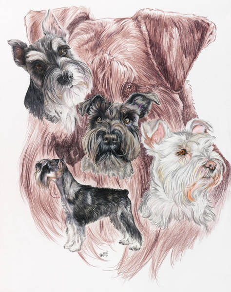 Mixed Media - Miniature Schnauzer Medley by Barbara Keith