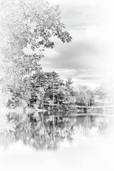 Photograph - Minimalist Fall Scene In Black And White by Anita Pollak