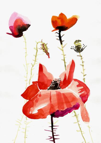 Pavot Wall Art - Painting - Minimalist Poppy Field Watercolor by Tiberiu Soos
