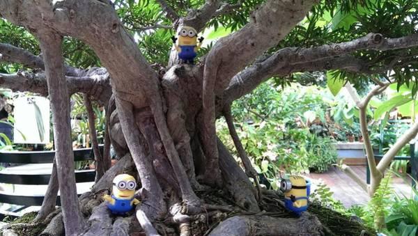 Photograph - Minions Having Fun by Liza Eckardt