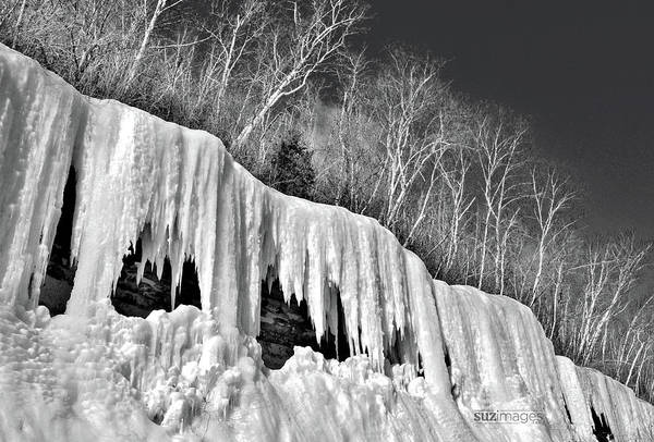 Photograph - Minnesota Icicles by Susie Loechler