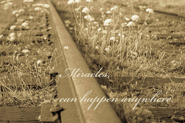 Wall Art - Photograph - Miracles by Marnie Patchett