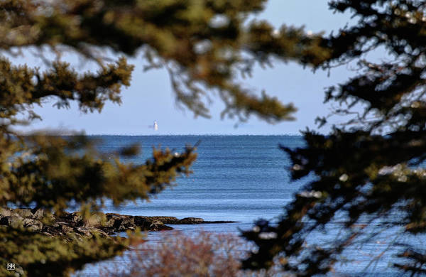 Photograph - Mirage Of Two Bush Light by John Meader