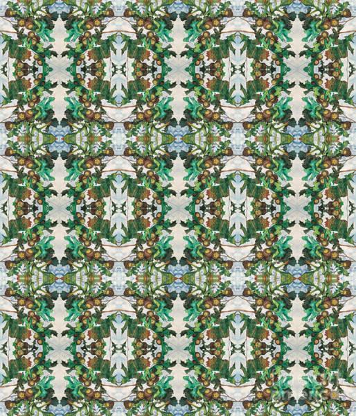 Digital Art - Mirror Image Of Acorns On An Oak Tree by Mastiff Studios