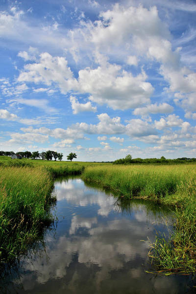 Photograph - Mirror Image Of Clouds In Glacial Park Wetland by Ray Mathis
