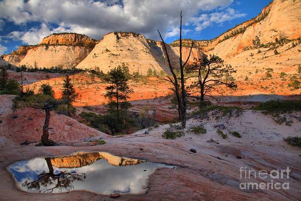 Photograph - Mirror In The Zion Desert by Adam Jewell