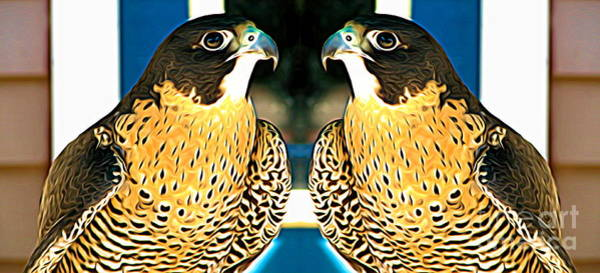 Mixed Media - Mirrored Bird Series Peregrine Falcons Expressionist Effect by Rose Santuci-Sofranko