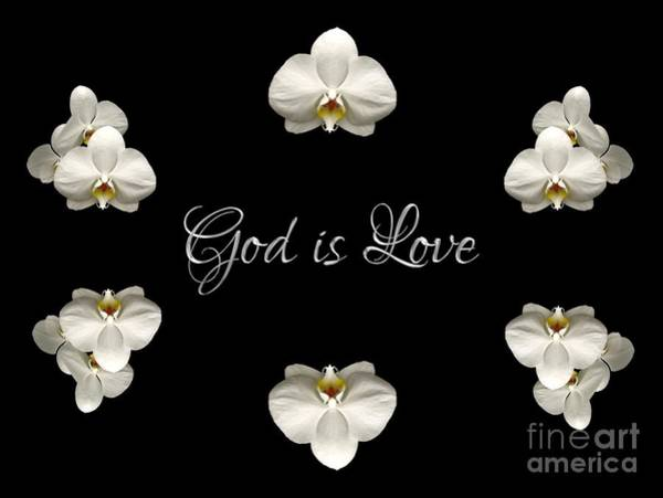 Photograph - Mirrored Orchids Framing God Is Love by Rose Santuci-Sofranko