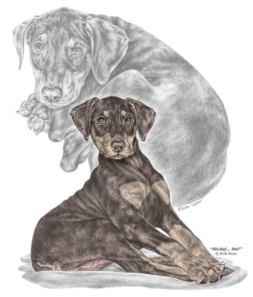 Drawing - Mischief ... Moi? - Doberman Pinscher Puppy - Color Tinted by Kelli Swan