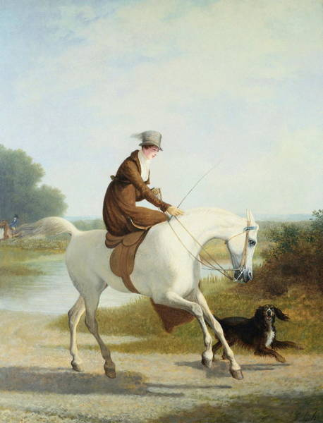 Jogging Painting - Miss Cazenove On A Gray Hunter by Jacques Laurent Agasse