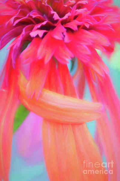 Miss Hot Papaya, Please Take A Bow Art Print
